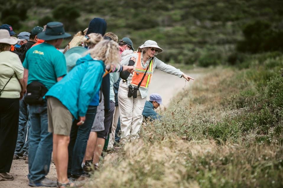 2014_Nature_Walk-Jane styer points at plants6944